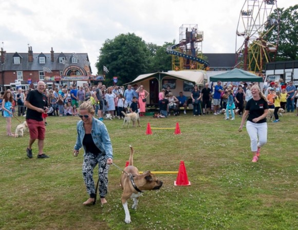 Homeward Hounds at the Theydon Bois Donkey Derby 2016