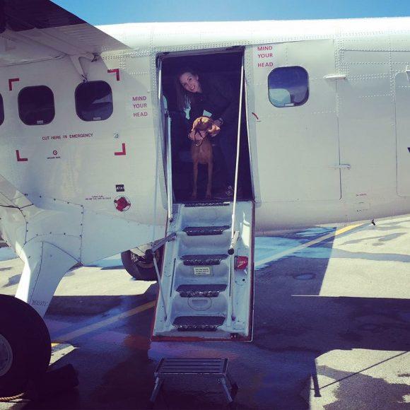 Rhubarb's first flight
