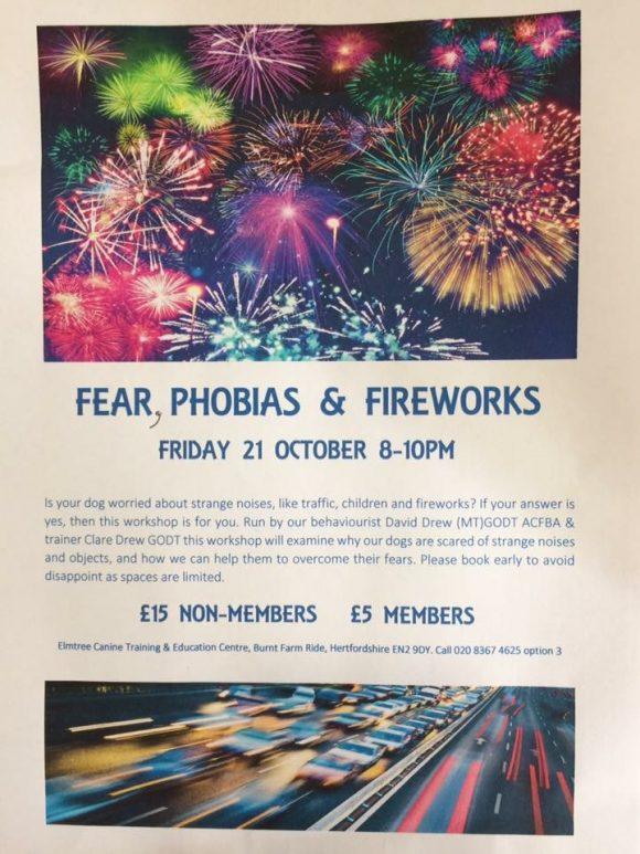 Fear, Phobias & Fireworks