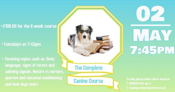 The Complete Canine Course
