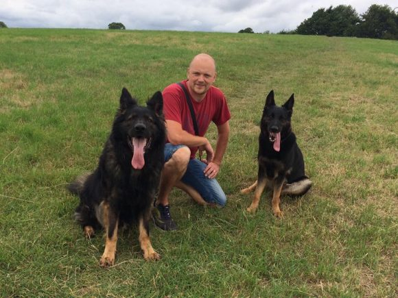 David out walking with our German Shepherd Dogs